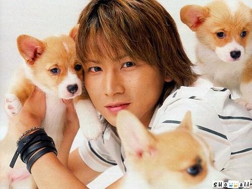 子犬と堂本光一さん
