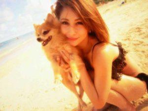 犬とダレノガレ明美