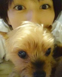 犬と吉井怜
